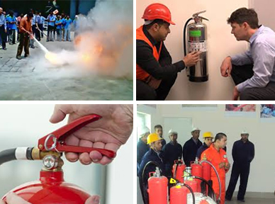 Cease Fire Safety Systems:: 100% owned Indian company